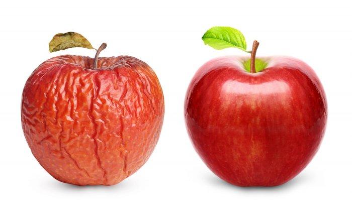 como-nutrir-nuestra-piel-desde-dentro-suplementos-nutricionales